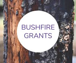 Checklist for small businesses impacted by the bushfires